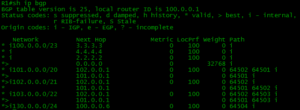 routes in bgp table